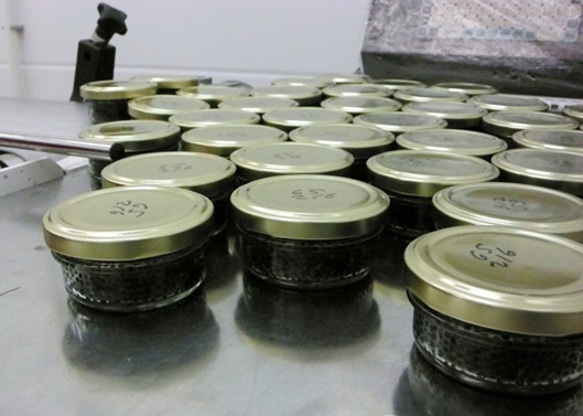 30 gram black caviar cans are ready